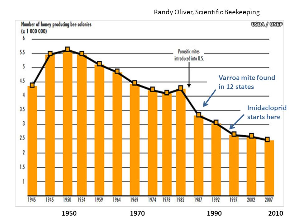 Varroa mite found in 12 states 1950 1970 1990 2010 Imidacloprid starts here Randy Oliver, Scientific Beekeeping