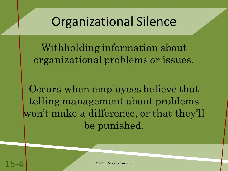Organizational Silence Withholding information about organizational problems or issues.
