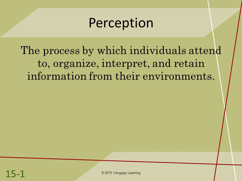 Perception The process by which individuals attend to, organize, interpret, and retain information from their environments.