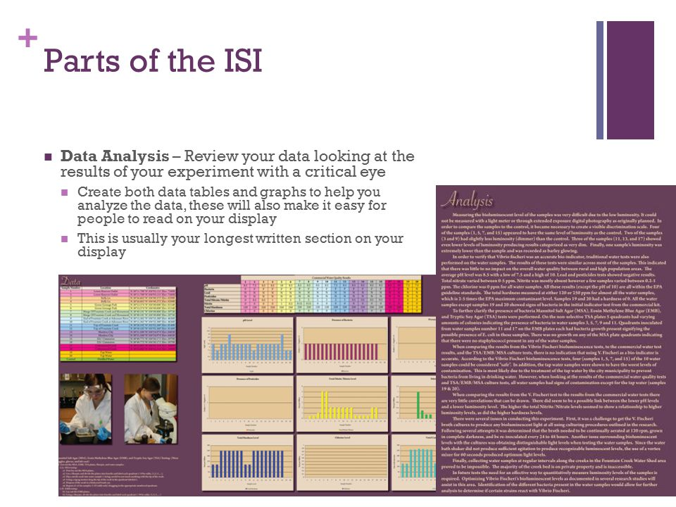 + Parts of the ISI Data Analysis – Review your data looking at the results of your experiment with a critical eye Create both data tables and graphs to help you analyze the data, these will also make it easy for people to read on your display This is usually your longest written section on your display