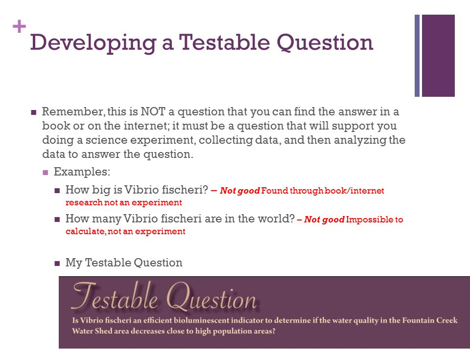 + Developing a Testable Question Remember, this is NOT a question that you can find the answer in a book or on the internet; it must be a question that will support you doing a science experiment, collecting data, and then analyzing the data to answer the question.