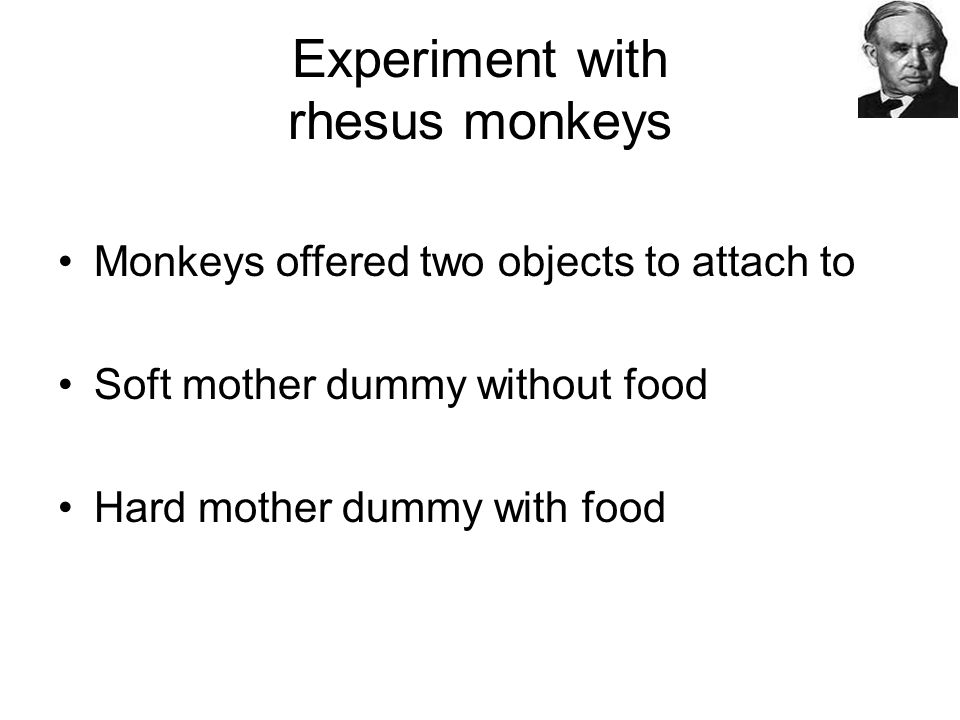 Experiment with rhesus monkeys Monkeys offered two objects to attach to Soft mother dummy without food Hard mother dummy with food