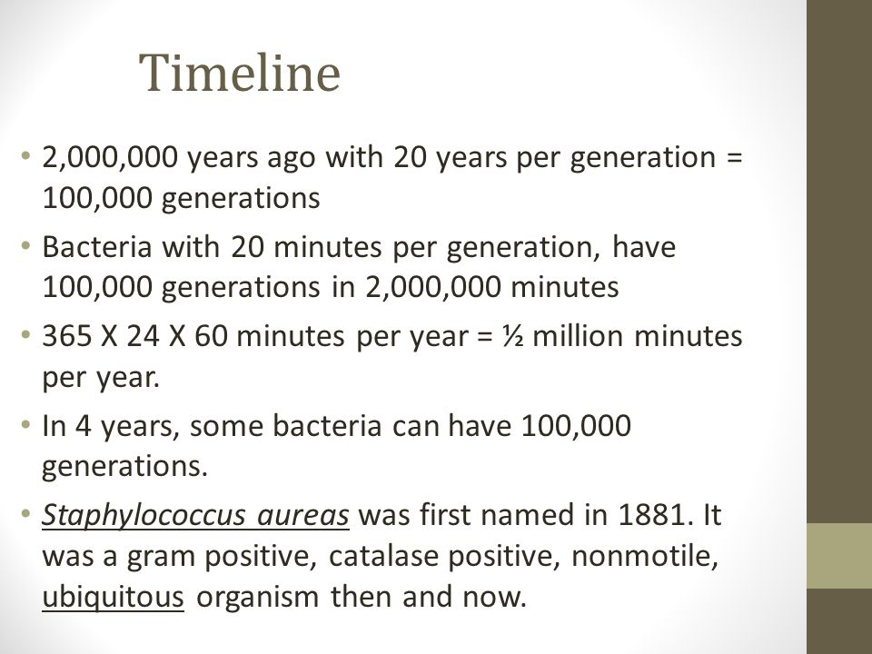 Timeline 2,000,000 years ago with 20 years per generation = 100,000 generations Bacteria with 20 minutes per generation, have 100,000 generations in 2