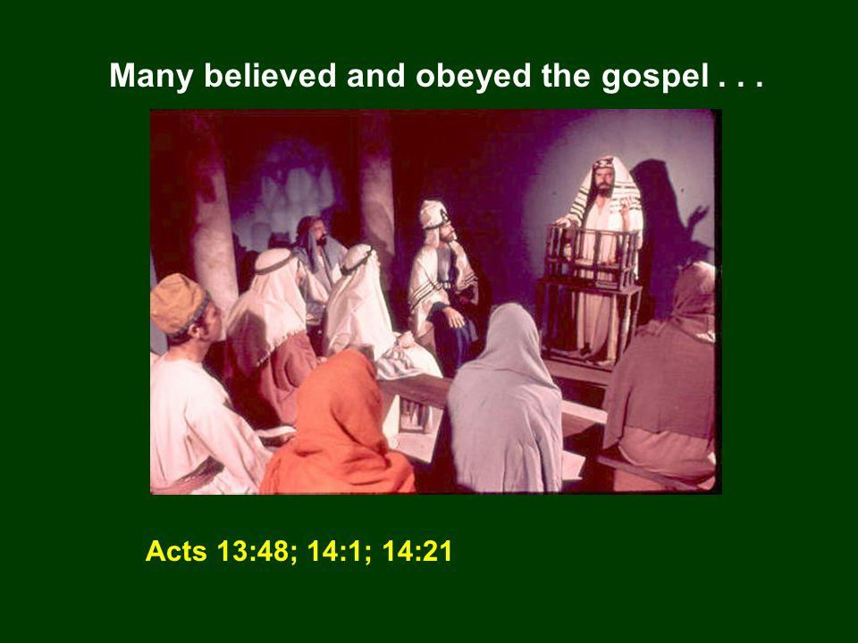 Paul appointed elders in every church...