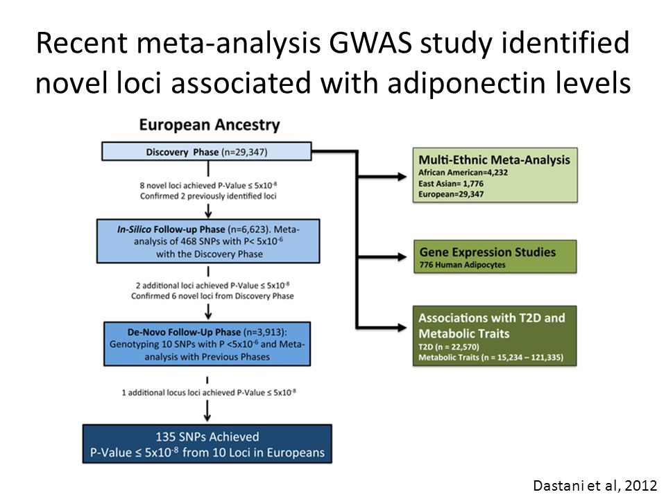 Recent meta-analysis GWAS study identified novel loci associated with adiponectin levels Dastani et al, 2012