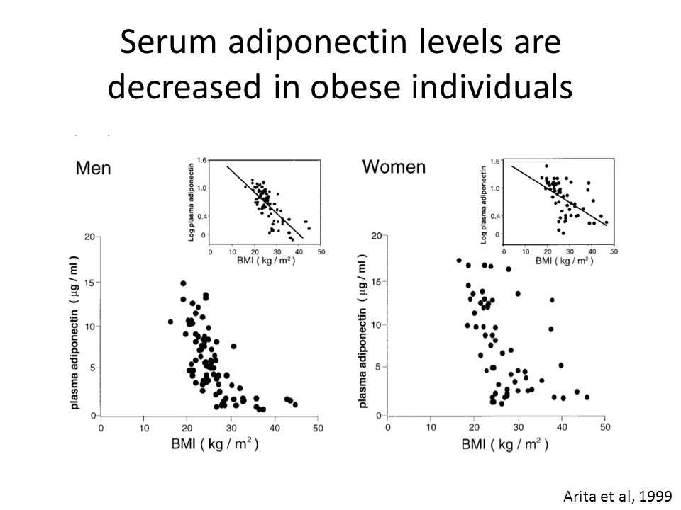 Serum adiponectin levels are decreased in obese individuals Arita et al, 1999