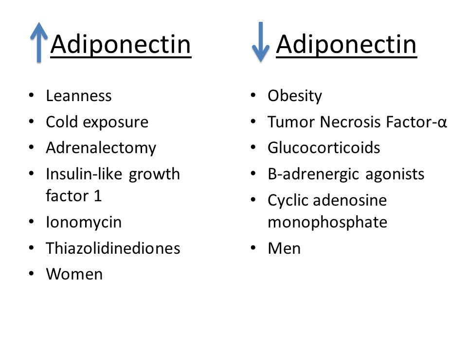 Adiponectin Leanness Cold exposure Adrenalectomy Insulin-like growth factor 1 Ionomycin Thiazolidinediones Women Adiponectin Obesity Tumor Necrosis Factor-α Glucocorticoids Β-adrenergic agonists Cyclic adenosine monophosphate Men