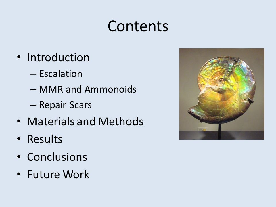 Contents Introduction – Escalation – MMR and Ammonoids – Repair Scars Materials and Methods Results Conclusions Future Work