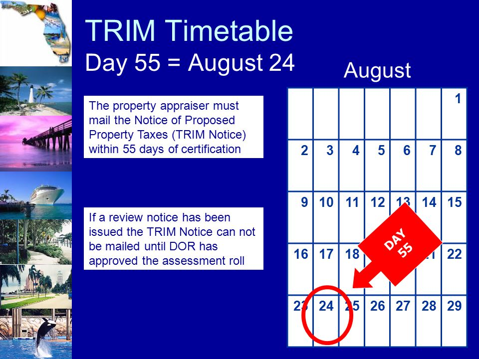 TRIM Timetable Day 55 = August 24 1 2345678 9101112131415 16171819202122 23242526272829 August DAY 55 The property appraiser must mail the Notice of P
