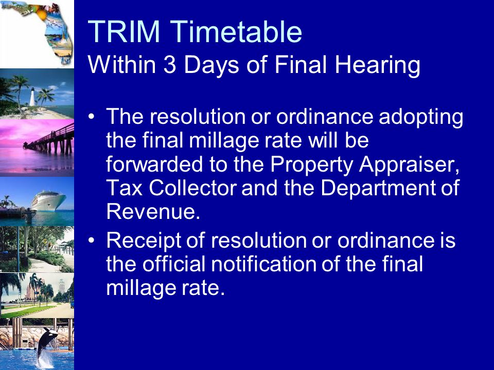 TRIM Timetable Within 3 Days of Final Hearing The resolution or ordinance adopting the final millage rate will be forwarded to the Property Appraiser,