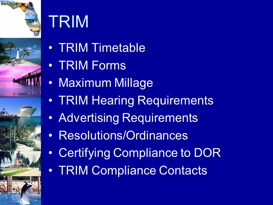 TRIM TRIM Timetable TRIM Forms Maximum Millage TRIM Hearing Requirements Advertising Requirements Resolutions/Ordinances Certifying Compliance to DOR