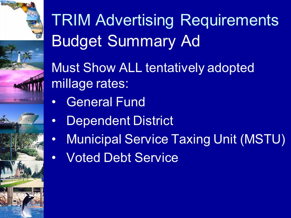 TRIM Advertising Requirements Budget Summary Ad Must Show ALL tentatively adopted millage rates: General Fund Dependent District Municipal Service Tax