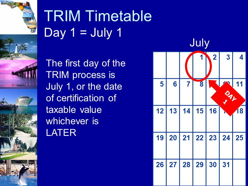 TRIM Timetable Day 1 = July 1 The first day of the TRIM process is July 1, or the date of certification of taxable value whichever is LATER 1234 56789
