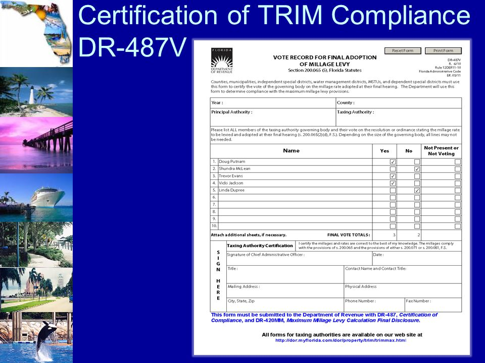Certification of TRIM Compliance DR-487V