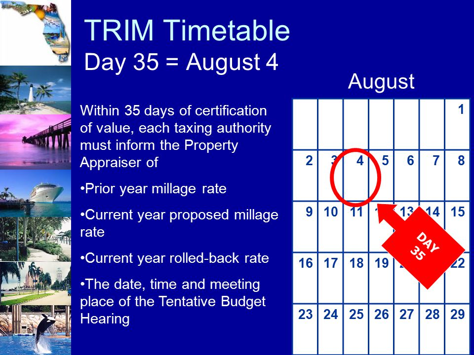 TRIM Timetable Day 35 = August 4 1 2345678 9101112131415 16171819202122 23242526272829 August DAY 35 Within 35 days of certification of value, each ta