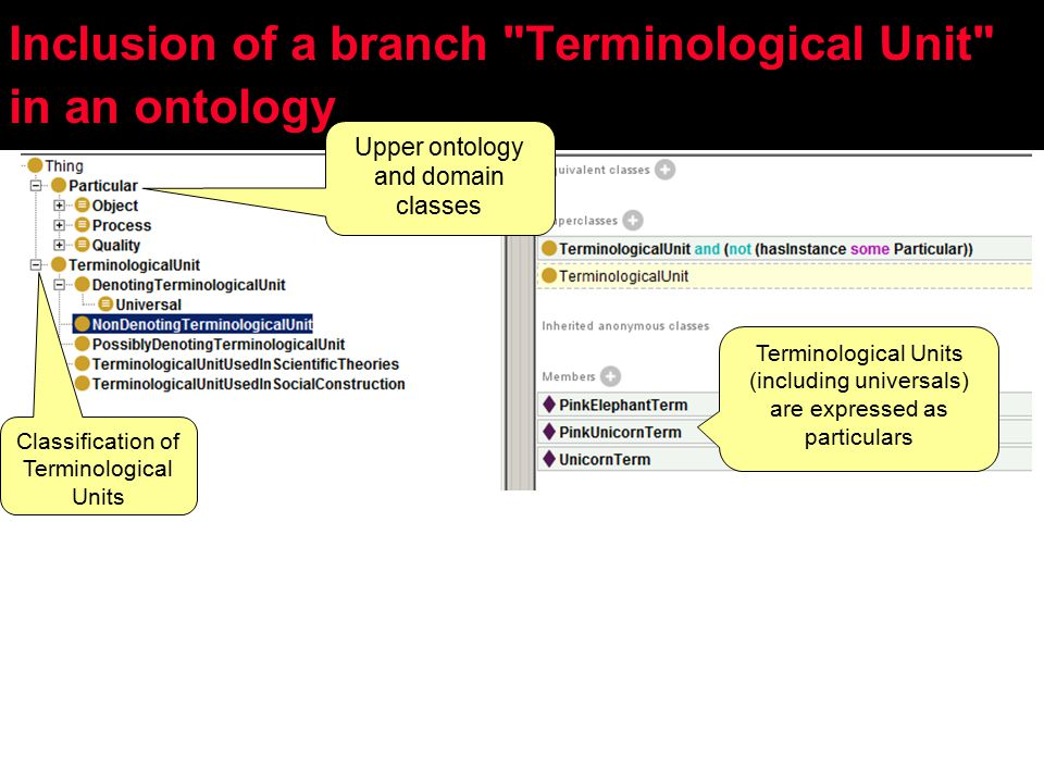 Upper ontology and domain classes Classification of Terminological Units Terminological Units (including universals) are expressed as particulars