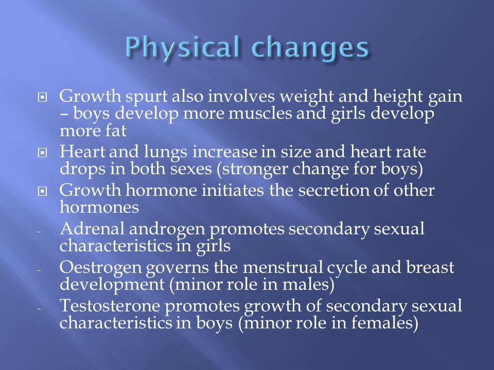  Growth spurt also involves weight and height gain – boys develop more muscles and girls develop more fat  Heart and lungs increase in size and heart rate drops in both sexes (stronger change for boys)  Growth hormone initiates the secretion of other hormones - Adrenal androgen promotes secondary sexual characteristics in girls - Oestrogen governs the menstrual cycle and breast development (minor role in males) - Testosterone promotes growth of secondary sexual characteristics in boys (minor role in females)