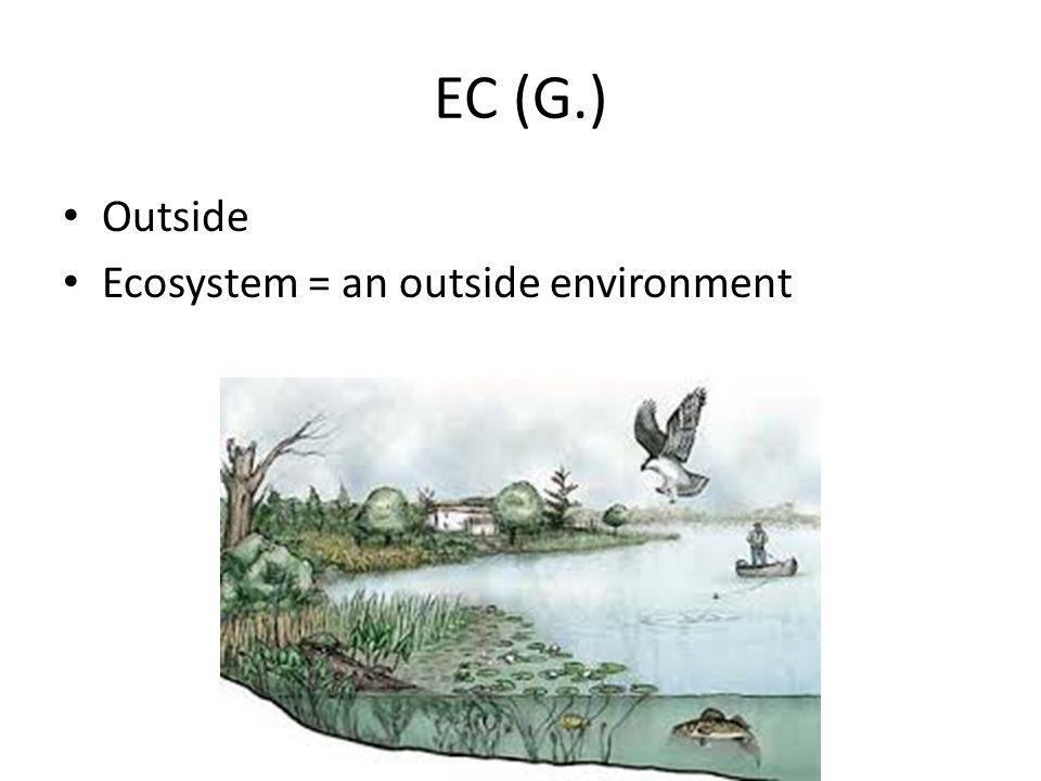 EC (G.) Outside Ecosystem = an outside environment
