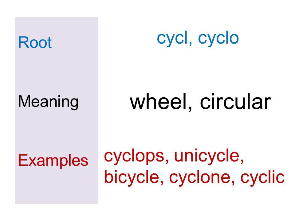 Root Meaning Examples cycl, cyclo wheel, circular cyclops, unicycle, bicycle, cyclone, cyclic