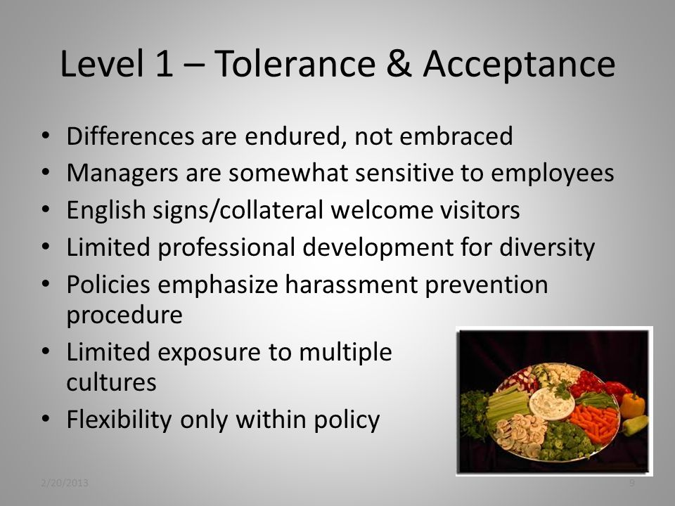 Level 1 – Tolerance & Acceptance Differences are endured, not embraced Managers are somewhat sensitive to employees English signs/collateral welcome visitors Limited professional development for diversity Policies emphasize harassment prevention procedure Limited exposure to multiple cultures Flexibility only within policy 2/20/20139