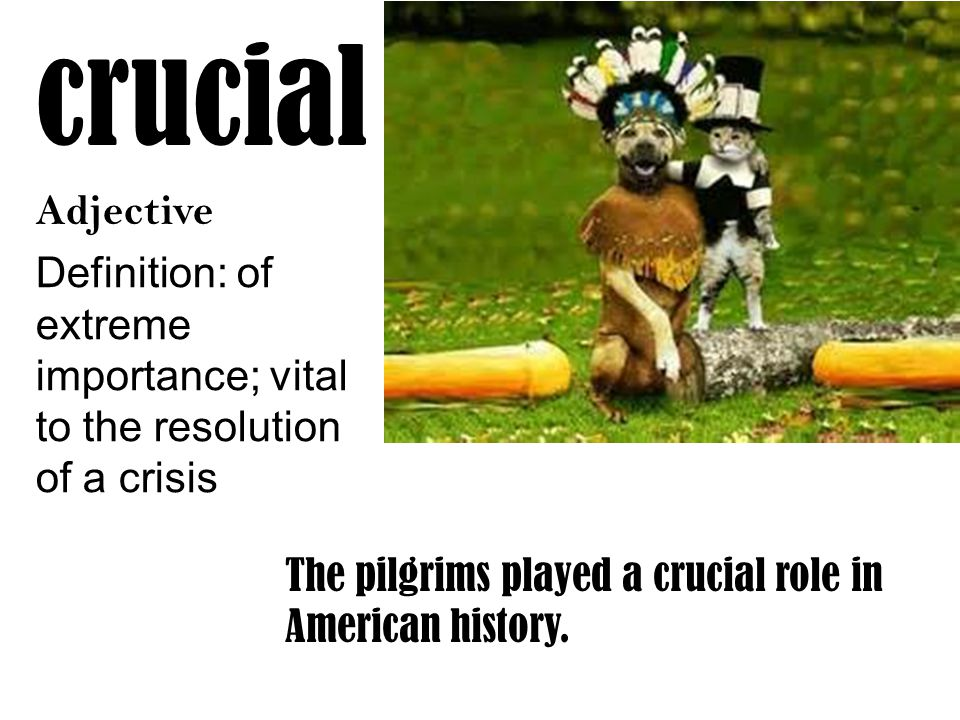 crucial Adjective Definition: of extreme importance; vital to the resolution of a crisis The pilgrims played a crucial role in American history.