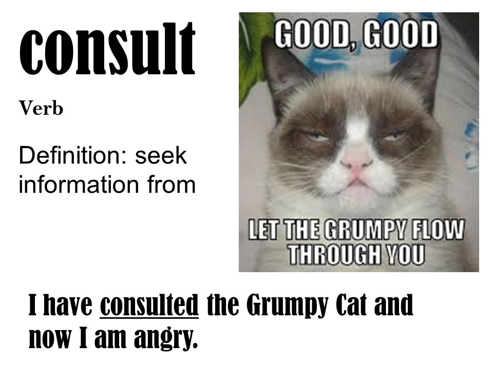 consult Verb Definition: seek information from I have consulted the Grumpy Cat and now I am angry.
