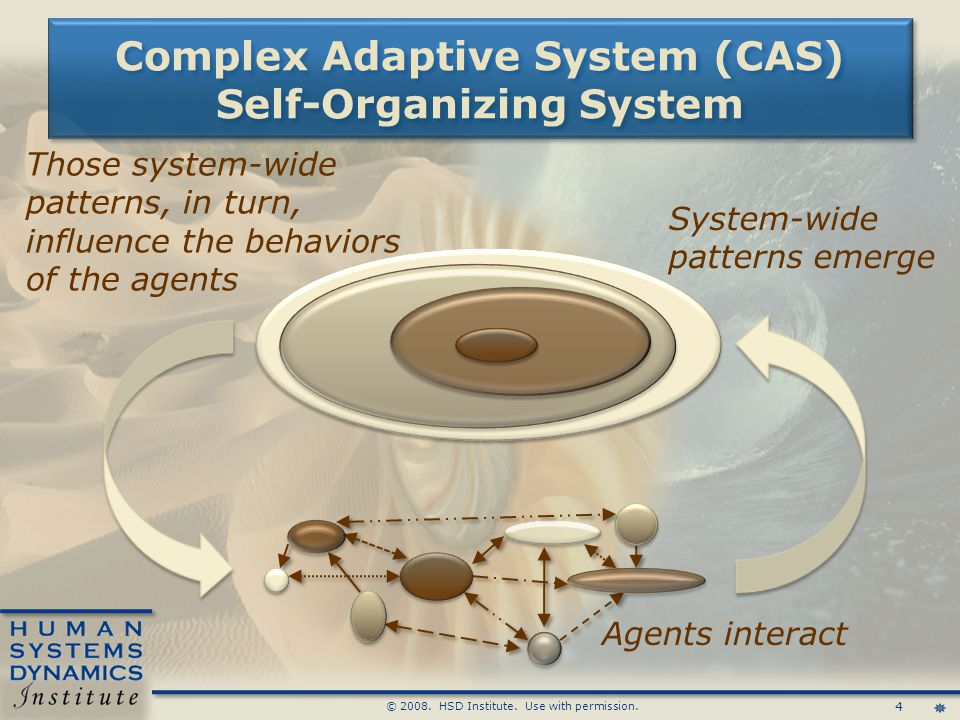 4 © 2008. HSD Institute. Use with permission. System-wide patterns emerge Complex Adaptive System (CAS) Self-Organizing System Agents interact Those s