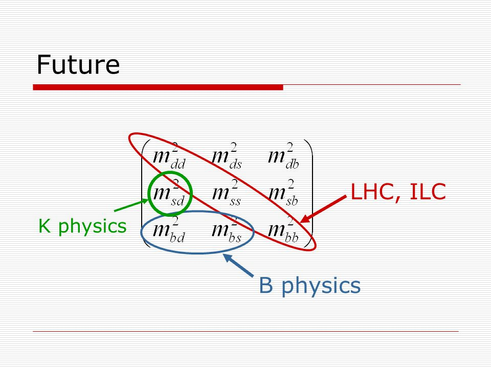 Future LHC, ILC B physics K physics