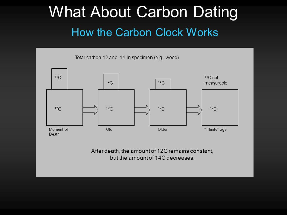 What About Carbon Dating How the Carbon Clock Works 14 C 12 C 14 C 14 C not measurable Moment of Death OldOlder Infinite age After death, the amount of 12C remains constant, but the amount of 14C decreases.