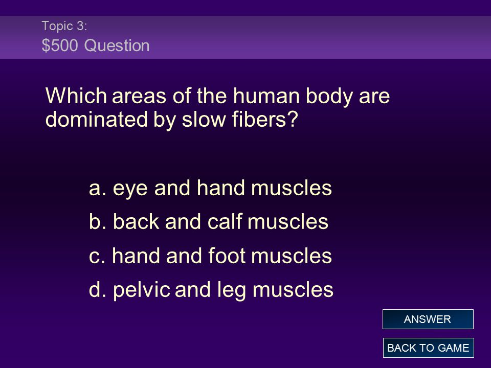 Topic 3: $500 Question Which areas of the human body are dominated by slow fibers? a. eye and hand muscles b. back and calf muscles c. hand and foot m