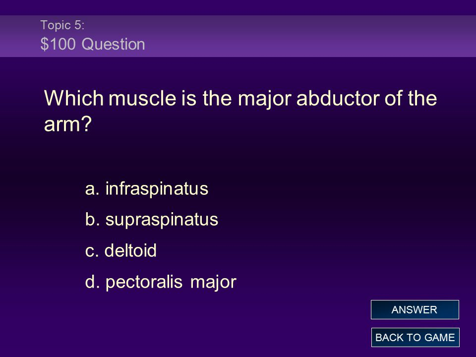 Topic 5: $100 Question Which muscle is the major abductor of the arm? a. infraspinatus b. supraspinatus c. deltoid d. pectoralis major BACK TO GAME AN