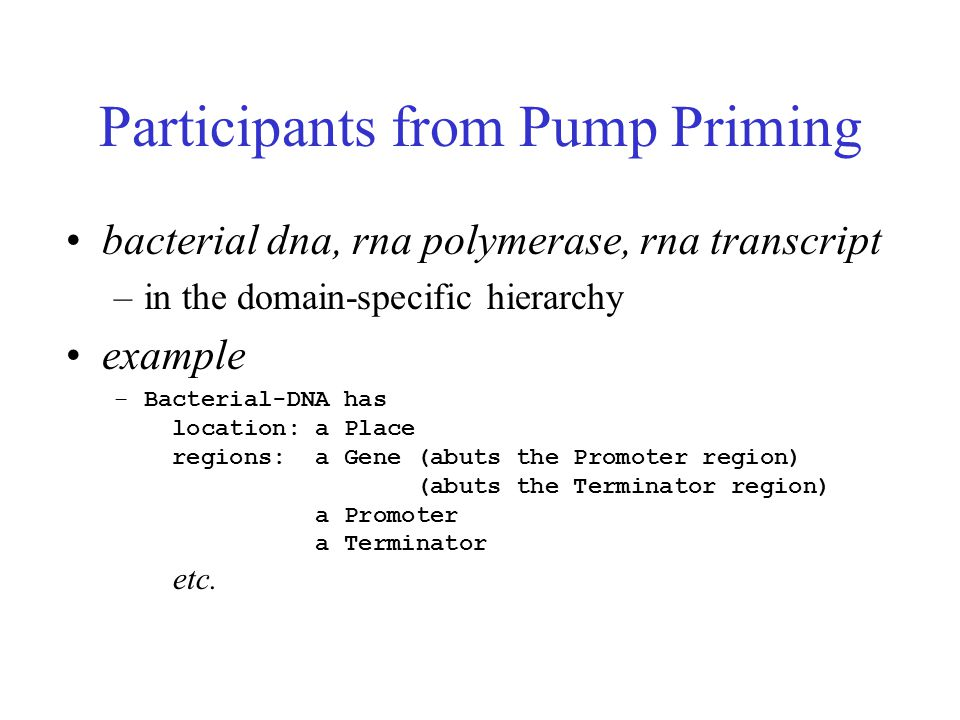 Participants from Pump Priming bacterial dna, rna polymerase, rna transcript –in the domain-specific hierarchy example –Bacterial-DNA has location: a Place regions: a Gene (abuts the Promoter region) (abuts the Terminator region) a Promoter a Terminator etc.