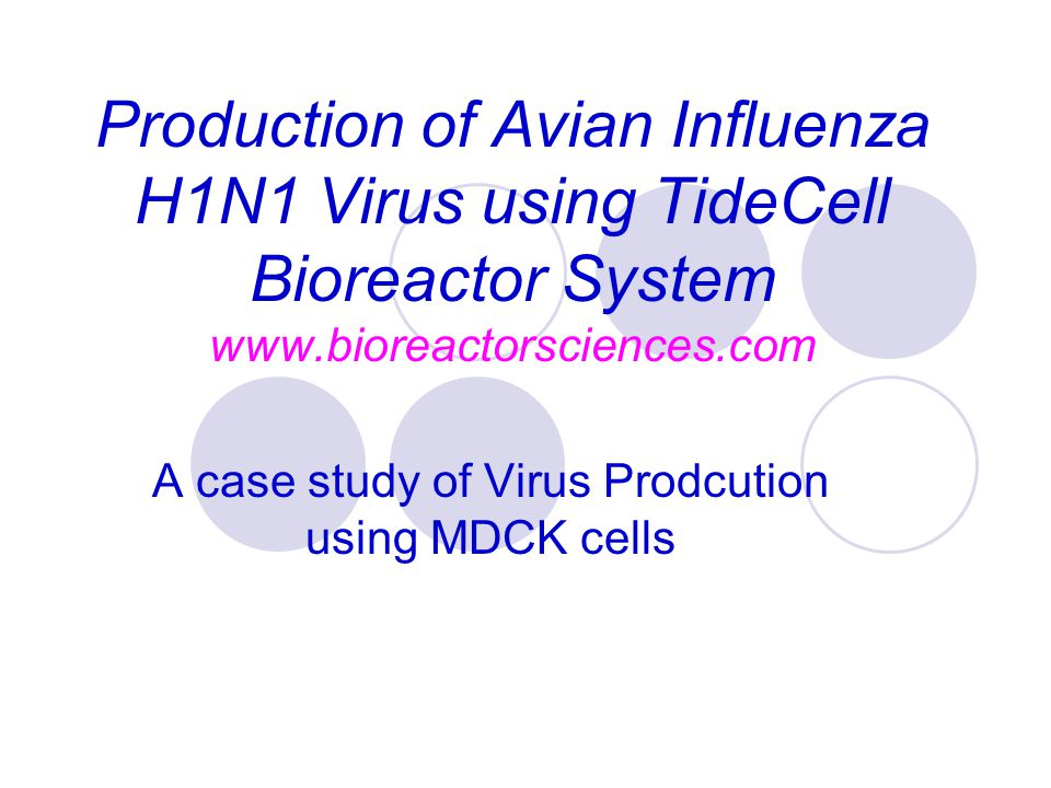 Production of Avian Influenza H1N1 Virus using TideCell Bioreactor System www.bioreactorsciences.com A case study of Virus Prodcution using MDCK cells