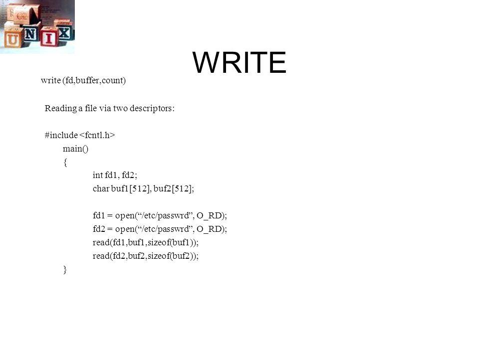 WRITE write (fd,buffer,count) Reading a file via two descriptors: #include main() { int fd1, fd2; char buf1[512], buf2[512]; fd1 = open( /etc/passwrd , O_RD); fd2 = open( /etc/passwrd , O_RD); read(fd1,buf1,sizeof(buf1)); read(fd2,buf2,sizeof(buf2)); }