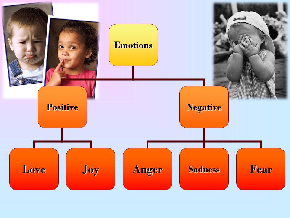 Emotions Positive LoveJoy Negative AngerSadnessFear