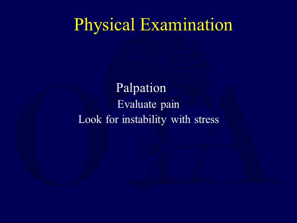 Physical Examination Neurovascular examination –Must be done thoroughly and documented.