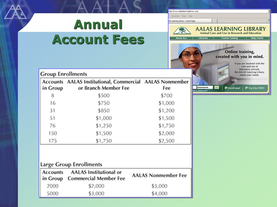Annual Account Fees
