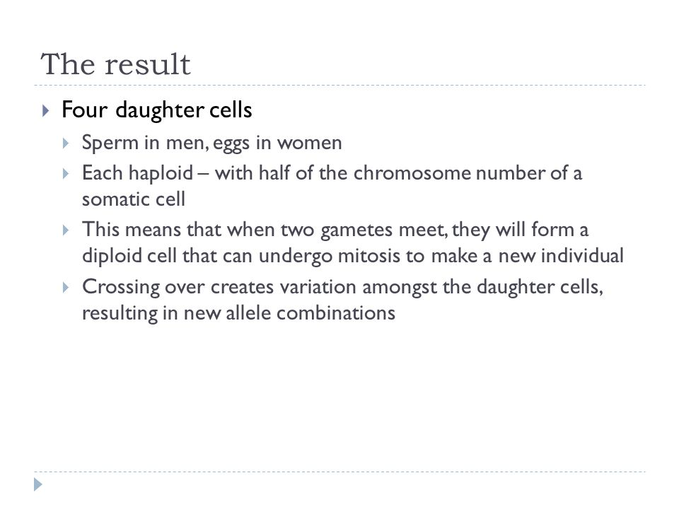 The result  Four daughter cells  Sperm in men, eggs in women  Each haploid – with half of the chromosome number of a somatic cell  This means that
