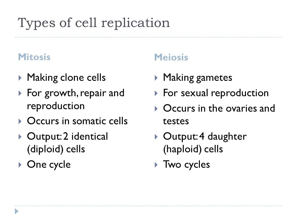 Types of cell replication Mitosis Meiosis  Making clone cells  For growth, repair and reproduction  Occurs in somatic cells  Output: 2 identical (diploid) cells  One cycle  Making gametes  For sexual reproduction  Occurs in the ovaries and testes  Output: 4 daughter (haploid) cells  Two cycles