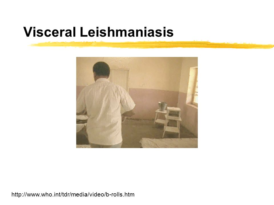Visceral Leishmaniasis http://www.who.int/tdr/media/video/b-rolls.htm