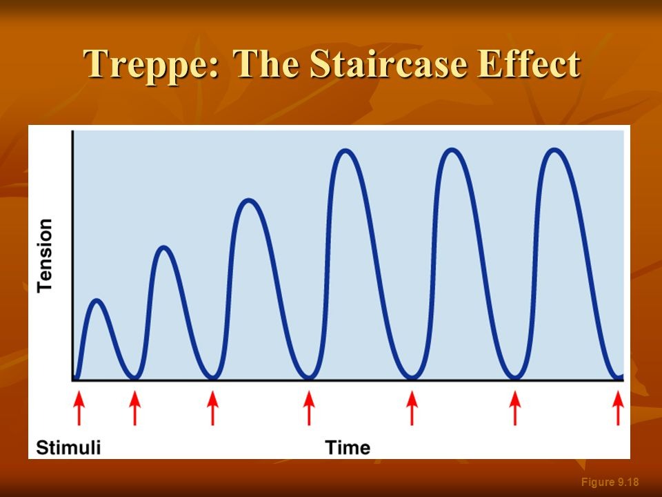 Treppe: The Staircase Effect Figure 9.18