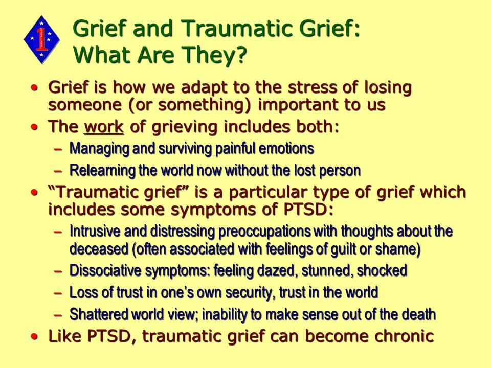 Grief and Traumatic Grief: What Are They.