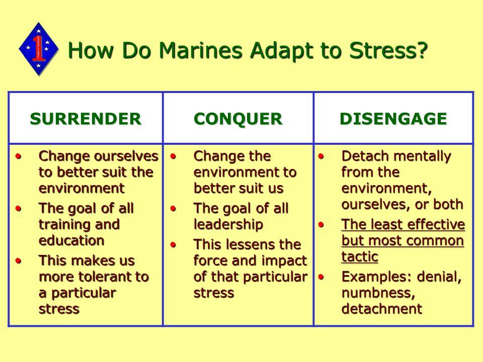 How Do Marines Adapt to Stress.