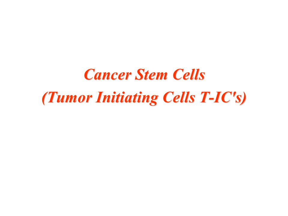 Cancer Stem Cells (Tumor Initiating Cells T-IC's)