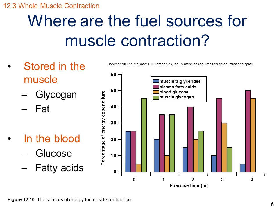 6 Where are the fuel sources for muscle contraction? Stored in the muscle –Glycogen –Fat In the blood –Glucose –Fatty acids 01234 60 50 40 30 20 10 0