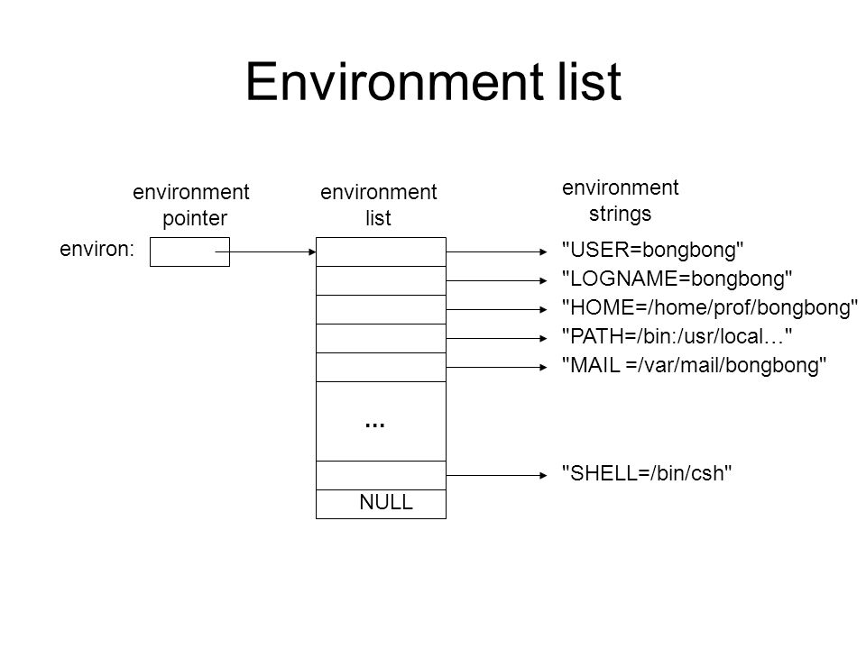 Environment list USER=bongbong LOGNAME=bongbong HOME=/home/prof/bongbong PATH=/bin:/usr/local… MAIL =/var/mail/bongbong SHELL=/bin/csh NULL environ: environment pointer environment list environment strings...