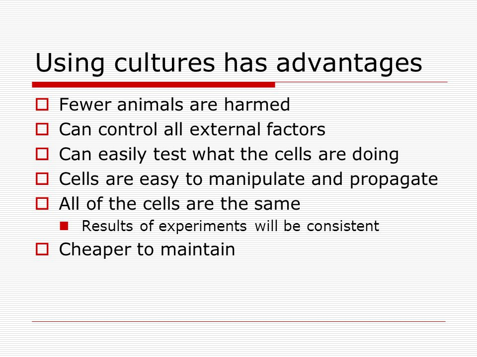 Using cultures has advantages  Fewer animals are harmed  Can control all external factors  Can easily test what the cells are doing  Cells are easy to manipulate and propagate  All of the cells are the same Results of experiments will be consistent  Cheaper to maintain