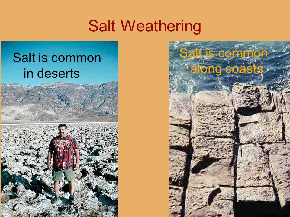 Salt Weathering Salt is common in deserts Salt is common along coasts