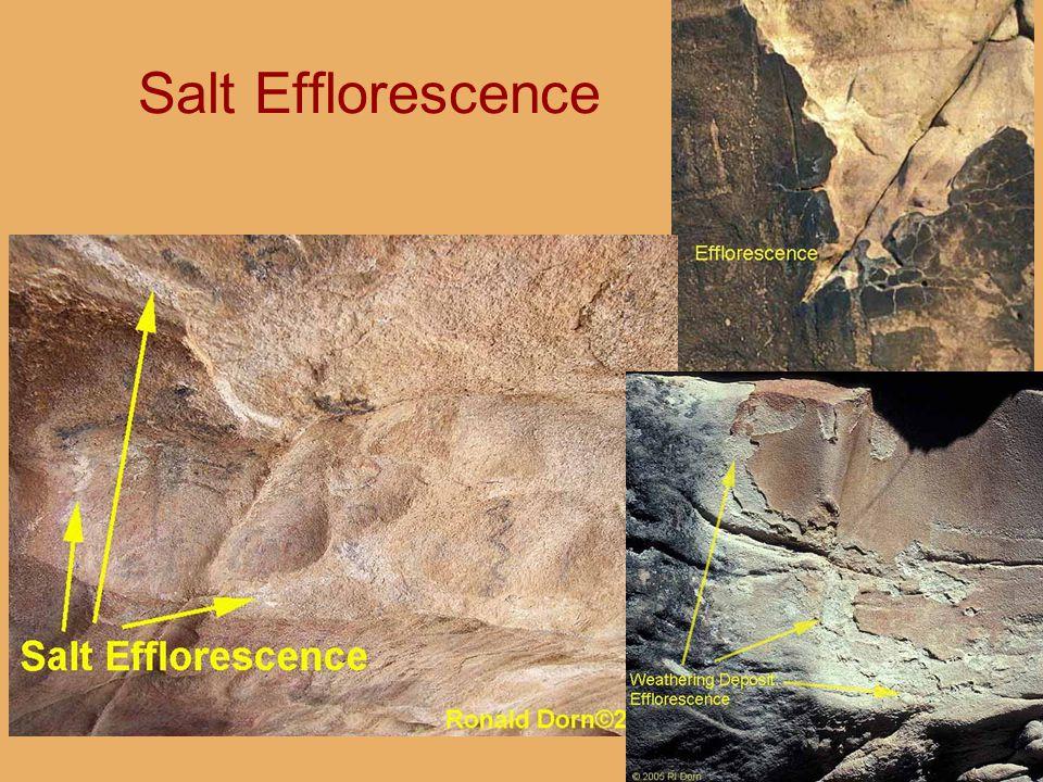 Salt Efflorescence