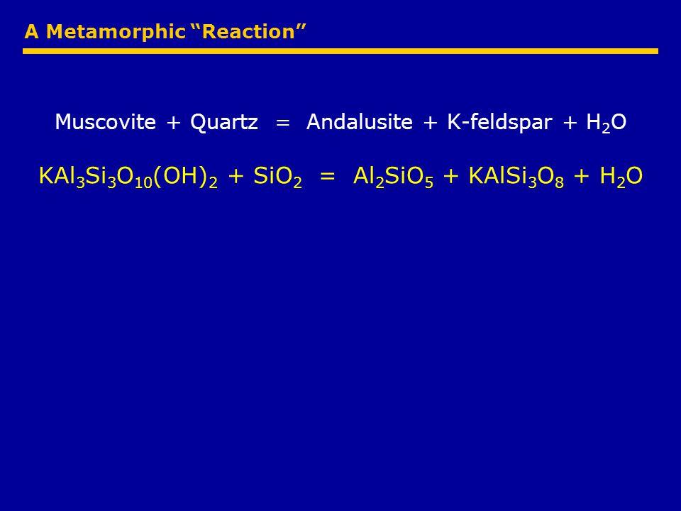 A Metamorphic Reaction Muscovite + Quartz = Andalusite + K-feldspar + H 2 O KAl 3 Si 3 O 10 (OH) 2 + SiO 2 = Al 2 SiO 5 + KAlSi 3 O 8 + H 2 O